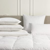 sofitel-boutique-goose-feather-down-pillow-sof-108-f_lrg_2_